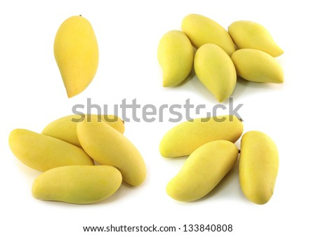 mangoes isolated on a white background - stock photo