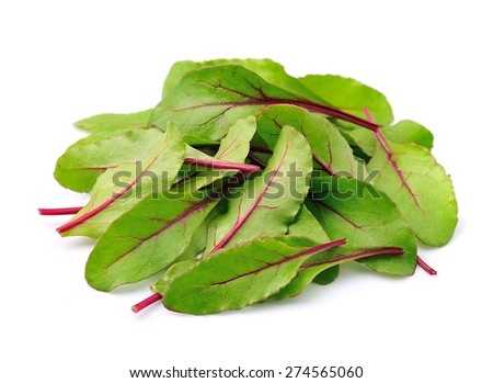Mangold salad closeup on white background. Herbs. Leaves of beet. - stock photo