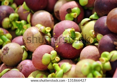 Mangosteen natural green background.
