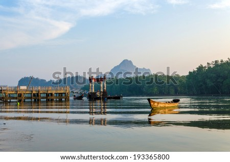 Mangrove forest topical rain forest, Phang nga, Thailand - stock photo