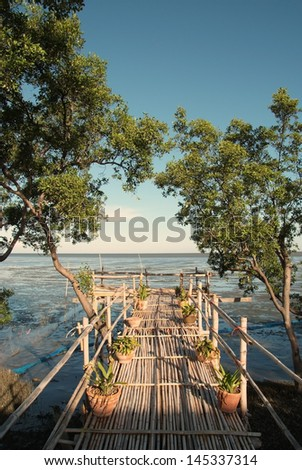 Mangrove forest with bamboo bridge at viewpoint to the sea - stock photo
