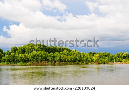 Mangrove forest with water.It is nature.Thailand forest. Jantaburi home stay. Jantaburi is province in Thailand. - stock photo