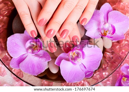 manicure and pedicure. body care, spa treatments