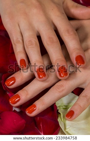 Manicure - Beautiful manicured woman's hands with red nail polish. Beautiful female finger nails with red nail closeup on petals. Perfect manicure