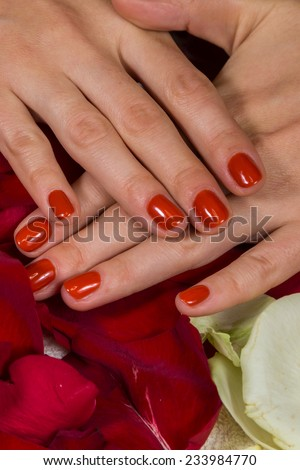 Manicure - Beautiful manicured woman's hands with red nail polish. Beautiful female finger nails with red nail closeup on petals. Perfect manicure - stock photo