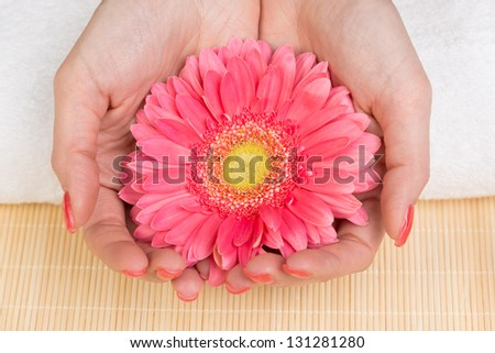 Manicure - Woman's hands holding flower. Studio shot.