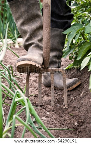 Mans feet in dirty wellington boots digging the garden with fork - stock photo