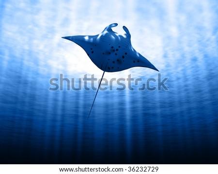 Manta ray with sun - stock photo