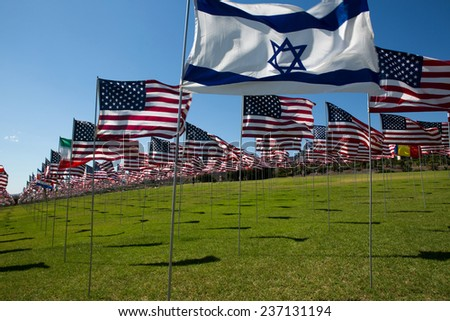 Many American and other flags in memorial  - stock photo