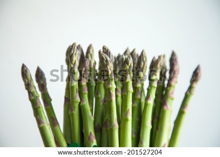 many asparagus on white background - stock photo