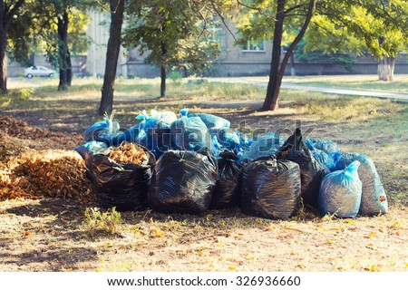 Many blue and black garbage bags with leaves on the ground. Cleaning of autumn foliage in park. Horizontal photo - stock photo