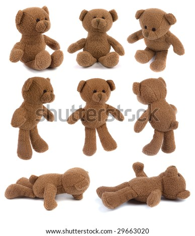 Many brown teddy bears isolated on white - all in hi-res - stock photo