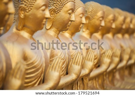 Many Buddha statue selective focus