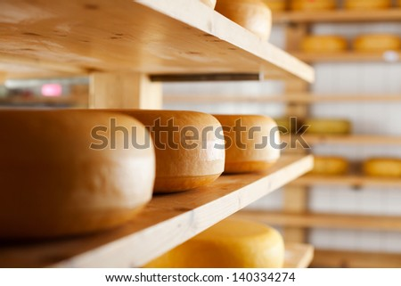 Many cheese-wheels maturing on different shelves at the cheesemaker cellar - stock photo