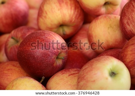 Many clean organic natural fresh tasty ripe striped red yellow apples crop fruit full of vitamin for healthy eating diet ball form for sale on blurred background, horizontal picture - stock photo