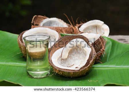 many coconut cut into half dried in the sun to make coconut oil, in rural  Kerala, India. Indian dry coconut or copra or dried kernel, of coconut used to extract coconut oil.   - stock photo