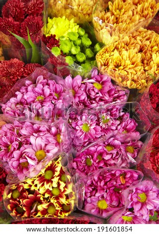 many color flower in shop in thailand - stock photo
