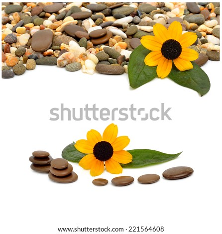 Many-colored little pebbles and beautiful flower isolated on the white background. Collage - stock photo