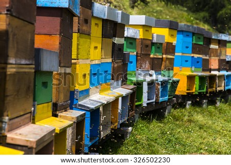 Many colorful beehives surrounded by many flying bees - stock photo