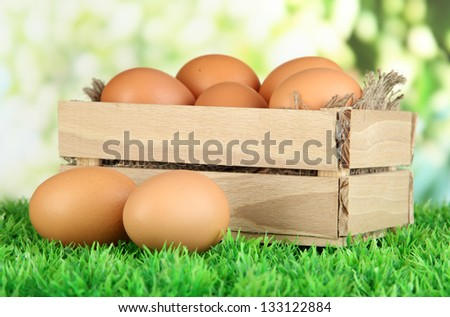 Many eggs in box on grass on bright background - stock photo
