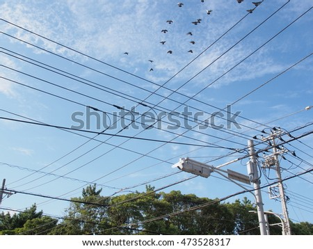 Many electric wires in the sky