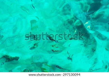 many fish in sea water background - stock photo