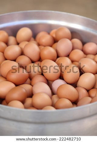 many fresh brown eggs in big pot prepare for boiling - stock photo