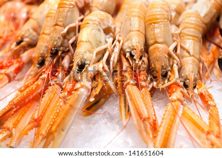 many fresh, orange crabs, shrimps on ice - stock photo