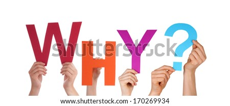 Many Hands Holding the Colorful Word Why, Isolated - stock photo