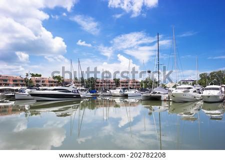 Many luxury yachts park at the harbor in Phuket boat lagoon, Phuket, Thailand  - stock photo