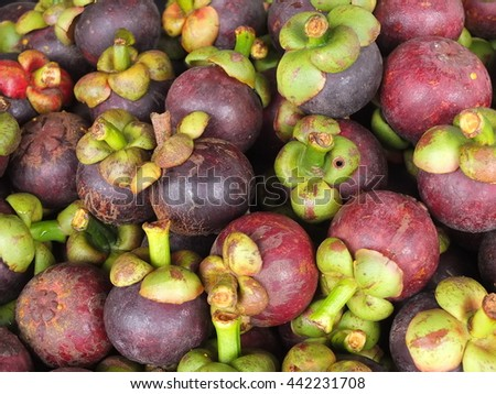 Many mangosteen fruit wholesale market.