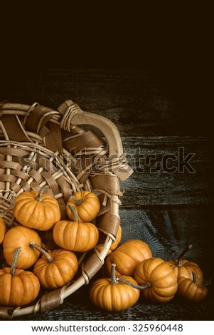 Many Moody Fall Halloween, Thanksgiving MIni Pumpkins in a basket Still Life against Dark Rustic Wood Wall with room or space for copy, text, your words.  Vertical  dramatic vignette, warm sepia tone - stock photo