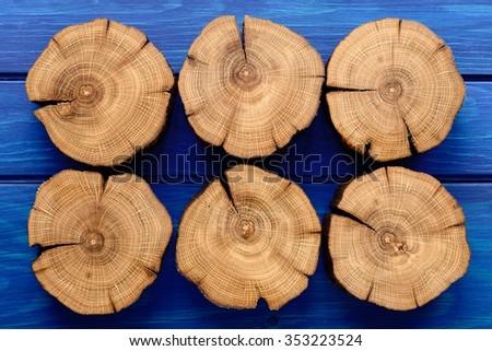 Many oak splits on navy blue background - stock photo