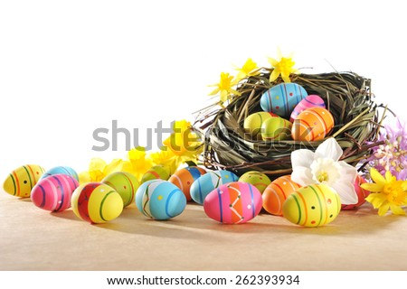 many painted easter eggs with easter nest and narcissus in front of white background  - stock photo