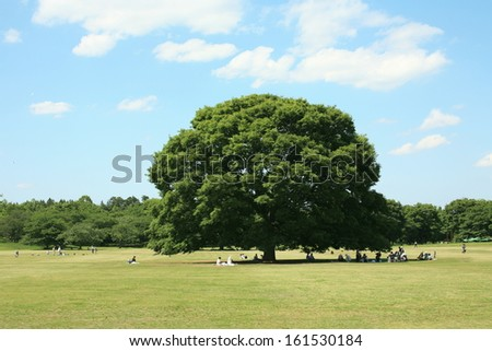 Many people sitting on the grass next to a tree. - stock photo