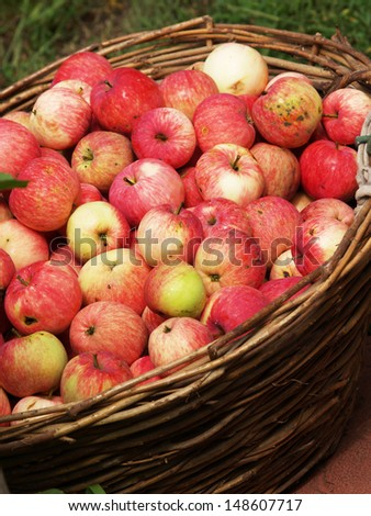 Many red apples in the wooden basket