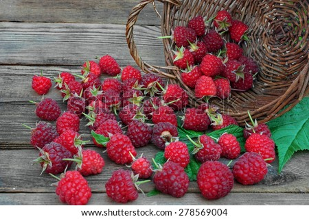 Many Ripe Raspberries With Leafs In Vintage Wicker Basket On The Rough Rustic Wood Table Background - stock photo