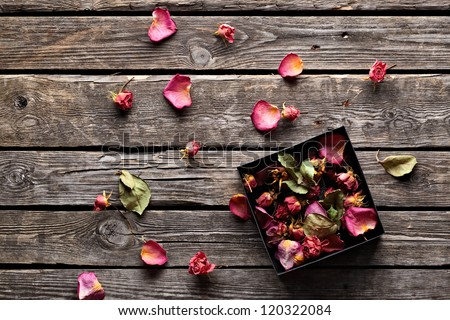 Many rose petals inside open gift box and scattered on old vintage wooden plates. Sweet holiday background with rose petals. - stock photo
