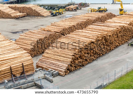 Many trees and logs stacked at a lumber operation on the Oregon coast