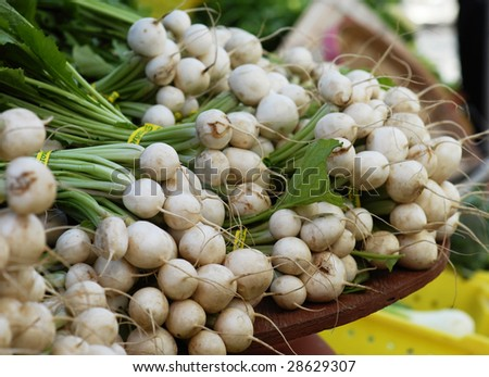 Many turnips for sale at an outdoor farmers market. - stock photo