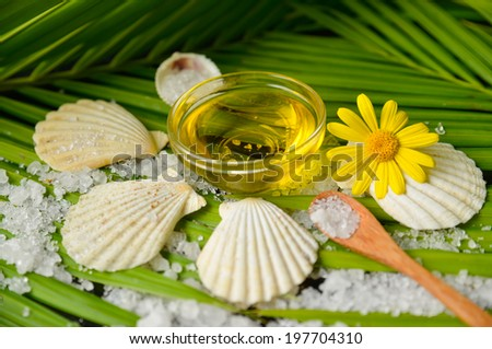 Many white salt and massage oil ,shell ,spoon on green palm leaf  - stock photo