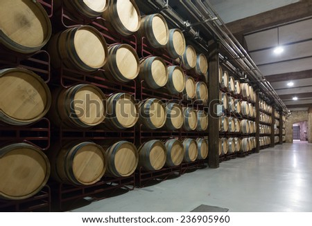 Many wooden barrels in rows at contemporary winery factory  - stock photo