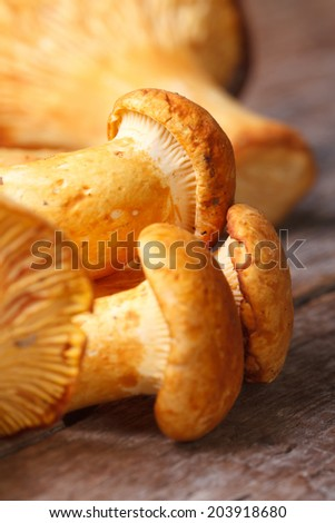 many yellow chanterelle mushrooms on a wooden table macro vertical