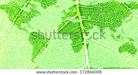 Map of the World on a Green Leaf- original image of Earth from NASA