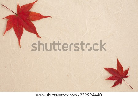 Maple and Japanese paper - stock photo
