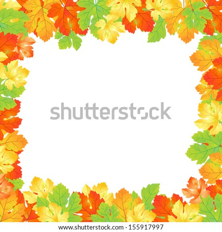 Maple autumn leaves background.