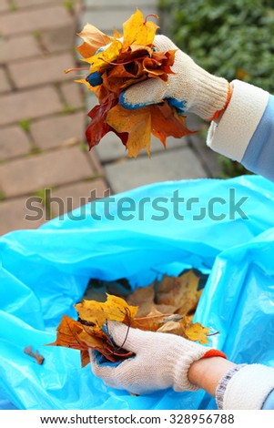 maple leaves in hand, autumnal clean up,  golden autumn - stock photo
