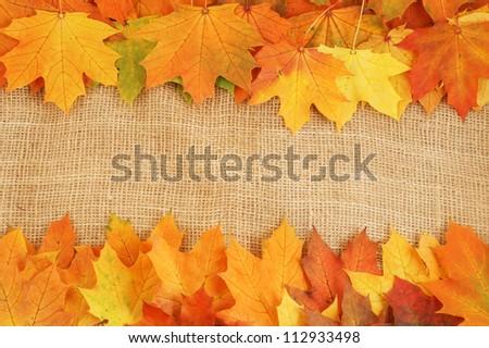 Maple leaves on sack background - stock photo