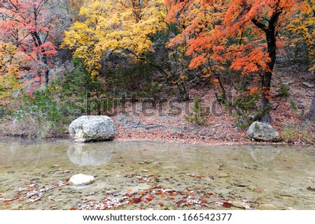 Maple trees and Creek at Lost Maples
