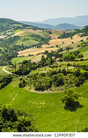 Marches (Italy) - Landscape at summer between Sassoferrato and Arcevia